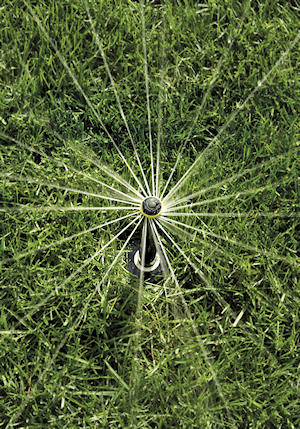 a rotary sprinkler viewed in action